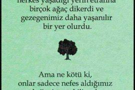 Doğayı sevelim, çevremizi ağaçlandıralım..!