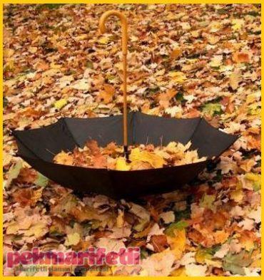 Hoş geldin sonbahar, yağmur kokusu...
